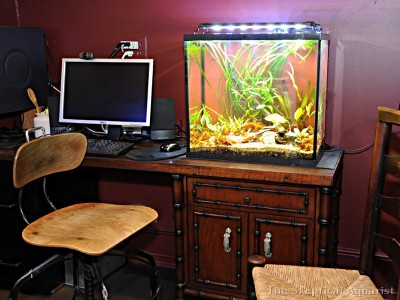 The Aquarist's home office